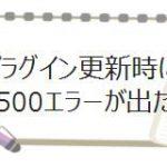 500error
